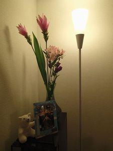 お花(小).jpg